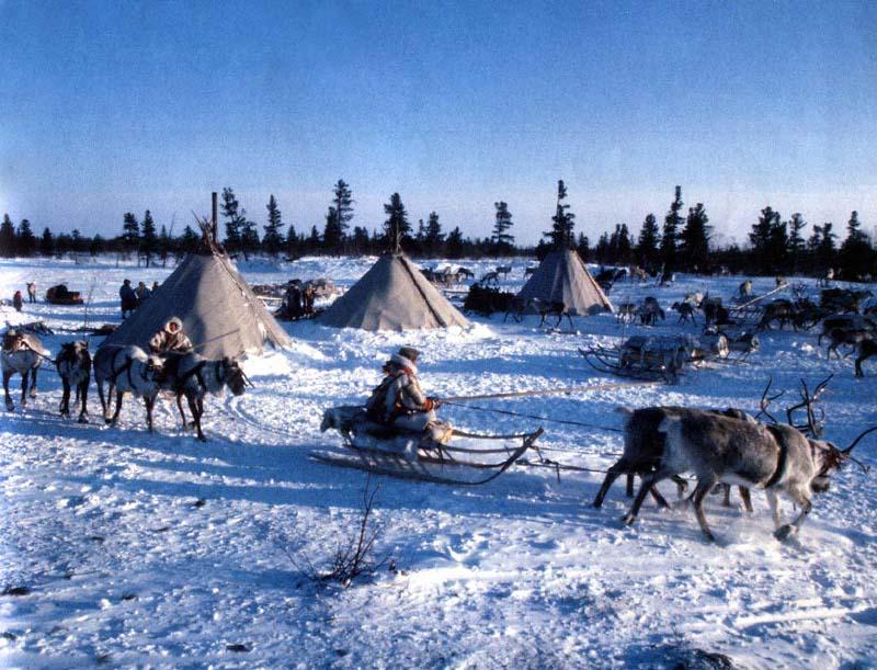 В поселении северных народов